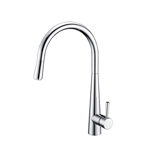 Classical Single Hole Dual Mode Sprayer Mixer Kitchen Faucet