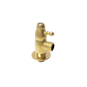 Luxury Brass Angle Valve BJF15
